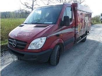 Mercedes-Benz Sprinter 313 CDI Tiefkuhl Thermo King 220V